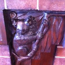 Coronet Flats koala detail